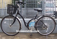 ecobici libellula modificata litio
